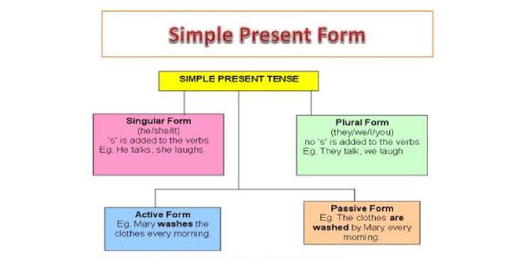 Simple Present Tense Test: Basic Quiz