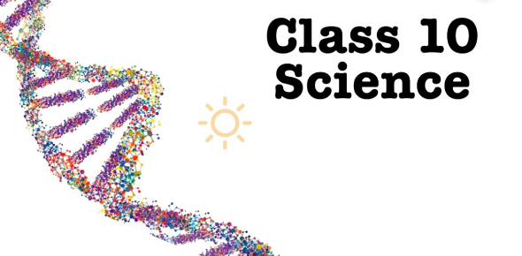 Grade 10 Science Practice Test
