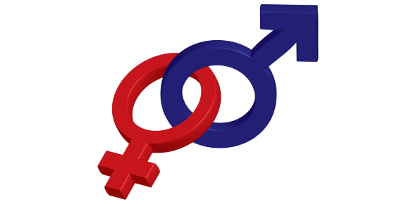 What Gender Should Have I Been Quiz