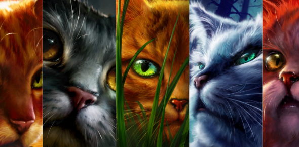 Warrior Cat Quiz , Who Are You , Girls Only , Long Results