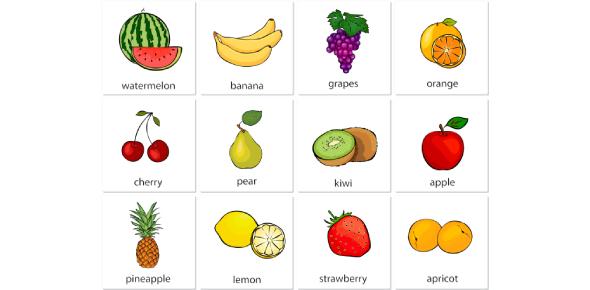 Nutrition Vocabulary Quiz Questions!