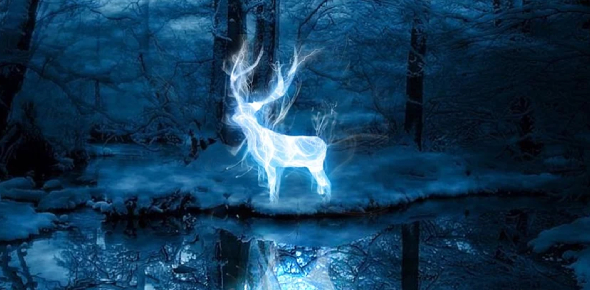 Harry Potter Quiz: Let US Guess What Animal Is Actually Your PatronUS?