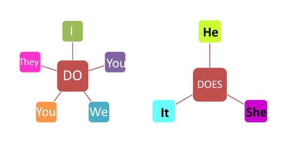English Grammar- Do & Does Quiz