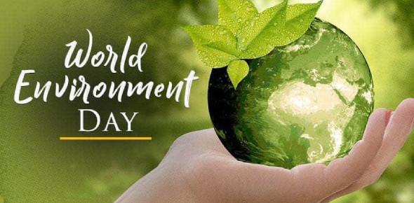 Ltc World Environment Day Quiz