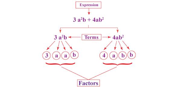 Algebric Equations Factor Quiz