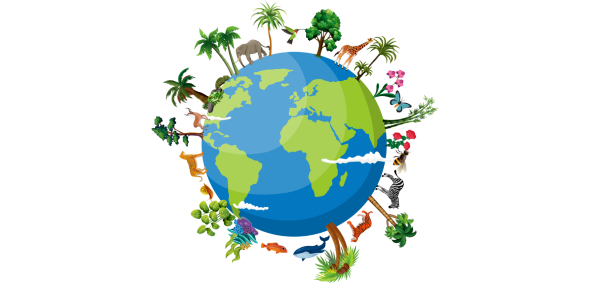 Biodiversity Quiz: Biology And Diversity