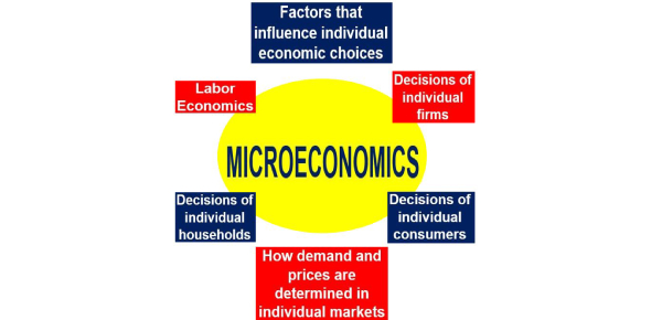 Economics Quiz: Test On Microeconomics! Trivia