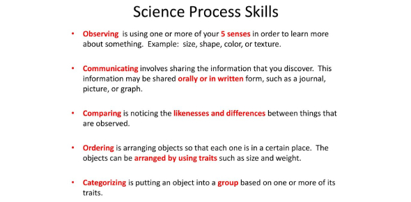 Science Process Skills Quiz!