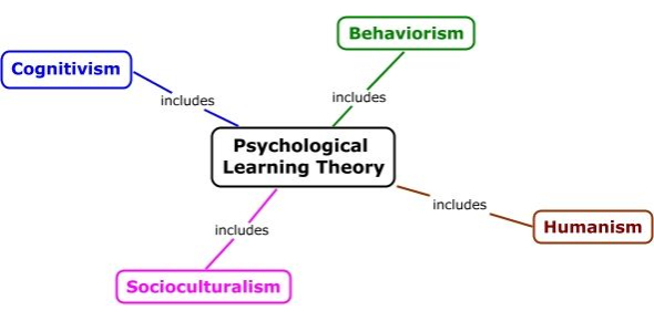 Learning Theory: Psychology Exam! Quiz