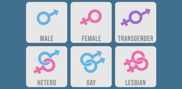 Take This Sexual Orientation Test! Quiz