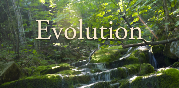 Questions On Evolution! Trivia Facts Quiz