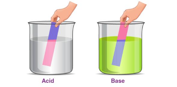 Acids & Bases Quick Quiz