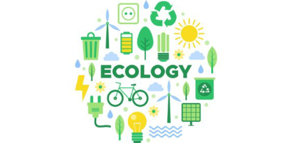 Trivia On Ecology Vocabulary! Quiz