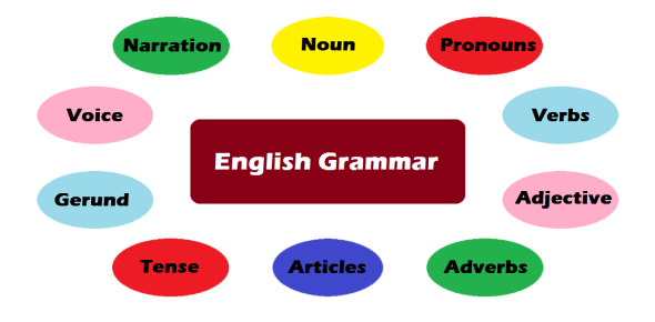English Grammar Quiz: Articles