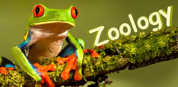 Zoology Test Trivia