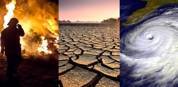 Global Climate Change Effect Quiz: Trivia!