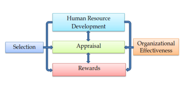 Nature Of Human Resources Functions! Trivia Quiz