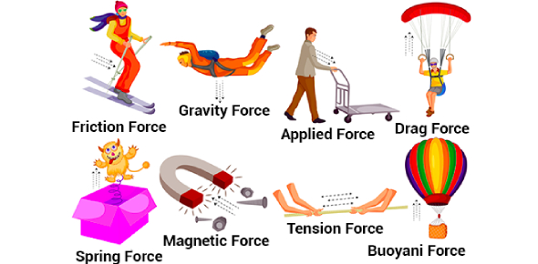 Types Of Forces Quiz: Trivia Test!