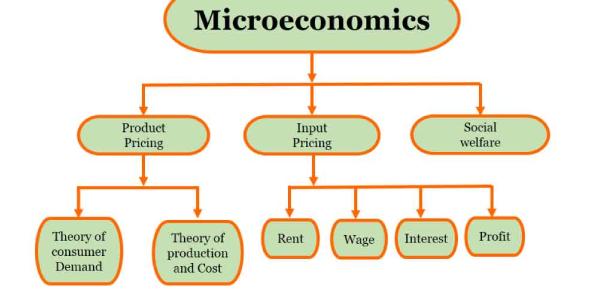 Microeconomics Practice Quiz Test