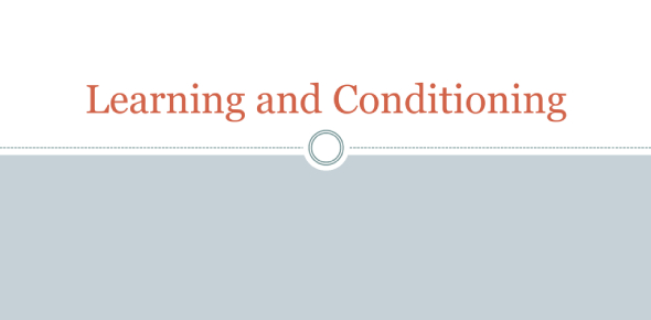 Practice Quiz For Learning And Conditioning