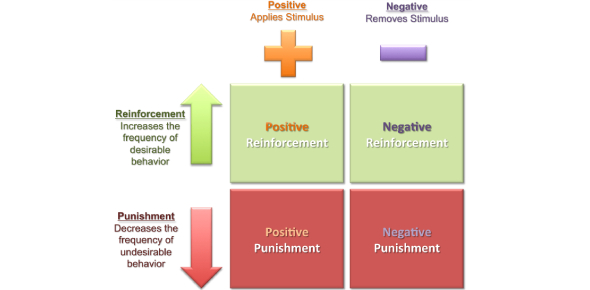 Operant Conditioning/Punishment And Reinforcement Quiz