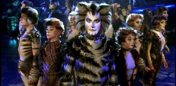 Which Jellicle Cat Are You??