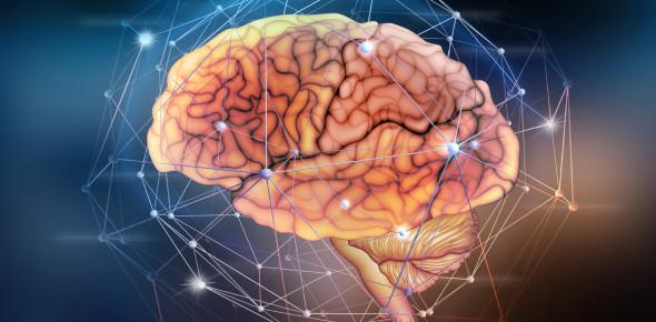 Neuro Exam Quiz 2