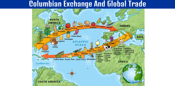 4.4 Columbian Exchange And Global Trade: Section Quiz