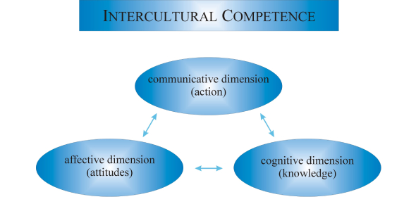 Intercultural Competence Questions! Trivia Quiz