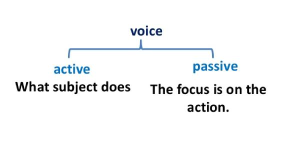 Active And Passive Voice Exam: Quiz!