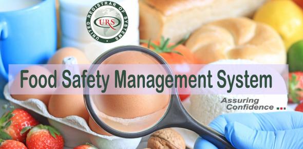 Food Safety Management System Quiz
