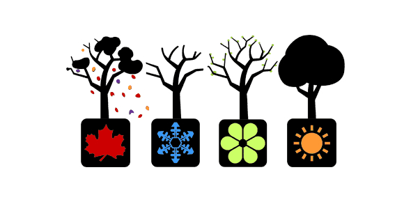 Weather And Seasons Quiz: Trivia Facts!