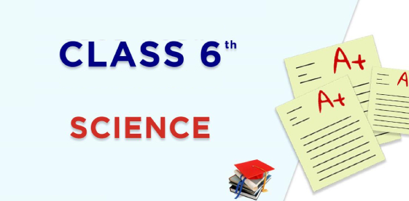 A Science Quiz For Class 6th!