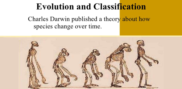 Quiz On Evolution And Classification! Trivia Facts