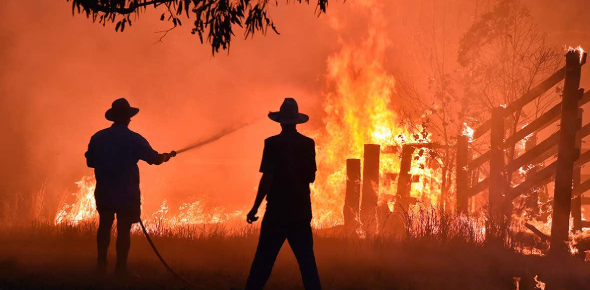 How Much Do You Know About Bushfires? Trivia Questions Quiz!