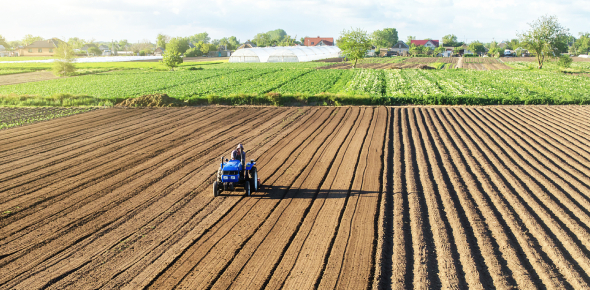 Agricultural Production Quiz Questions