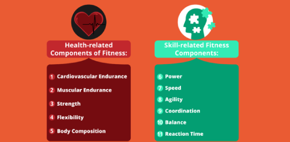 Skill Related Components Of Fitness!