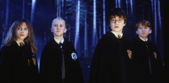 Quiz: What Do The Harry Potter Characters Think Of You?