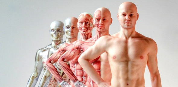 Multiple Choice Quiz On Human Body Quiz