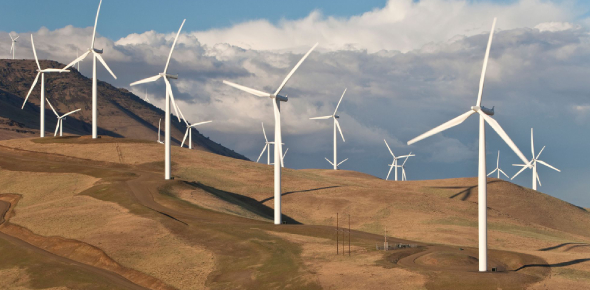 Quiz: How Well You Know About Wind Energy? Trivia