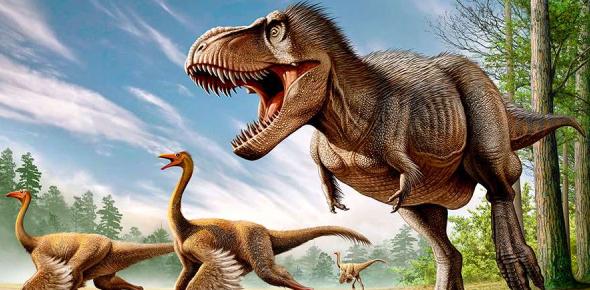 Dinosaur Quiz For Kids