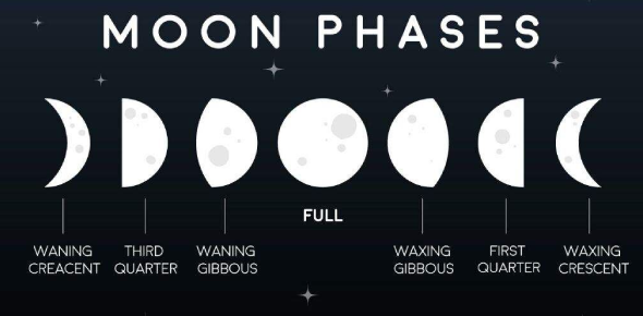 Quiz On The Phases Of Moon