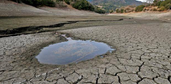 12 Facts About Water Scarcity! Trivia Quiz