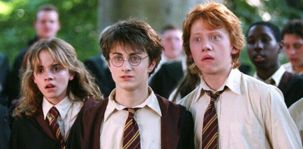 What On Earth Do The Harry Potter Characters Think Of You!!!! (4 Girls Only)
