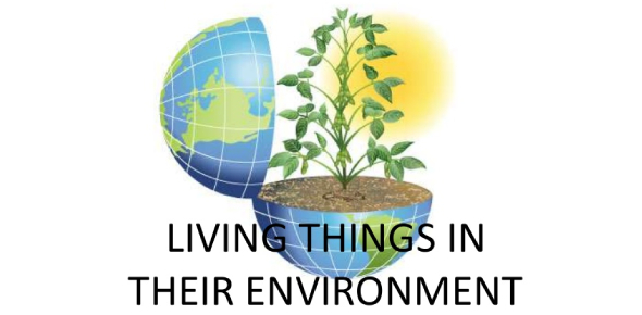 Sect 1.1 Living Things & Their Environment