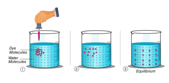 Characteristics Of Matter Quiz: Chemistry Trivia!