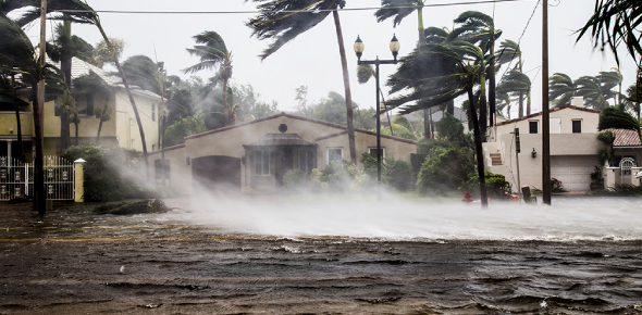 Could You Survive A Natural Disaster?