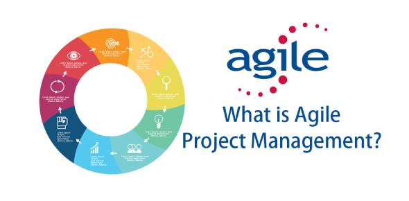 Agile Project Management Assessment Test