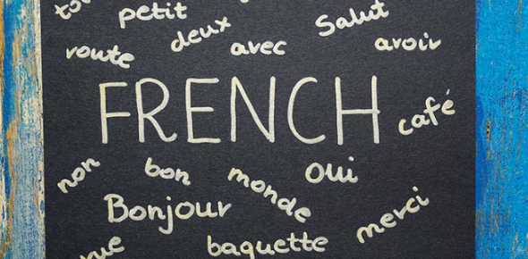 The French 1 Final Exam Review Test