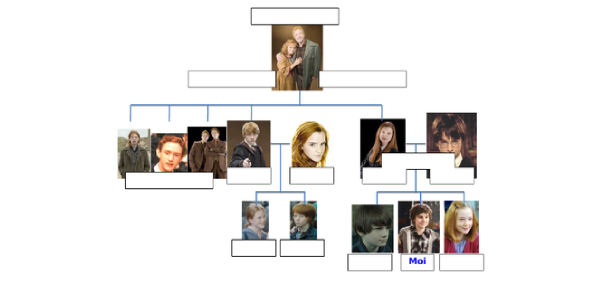 The Ultimate Harry Potter Family Tree Quiz